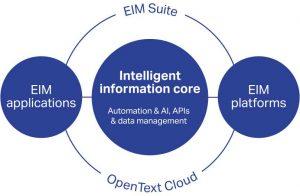 Enterprise Information Management (EIM)