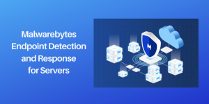 Malwarebytes Extends Turnkey Protection to Servers